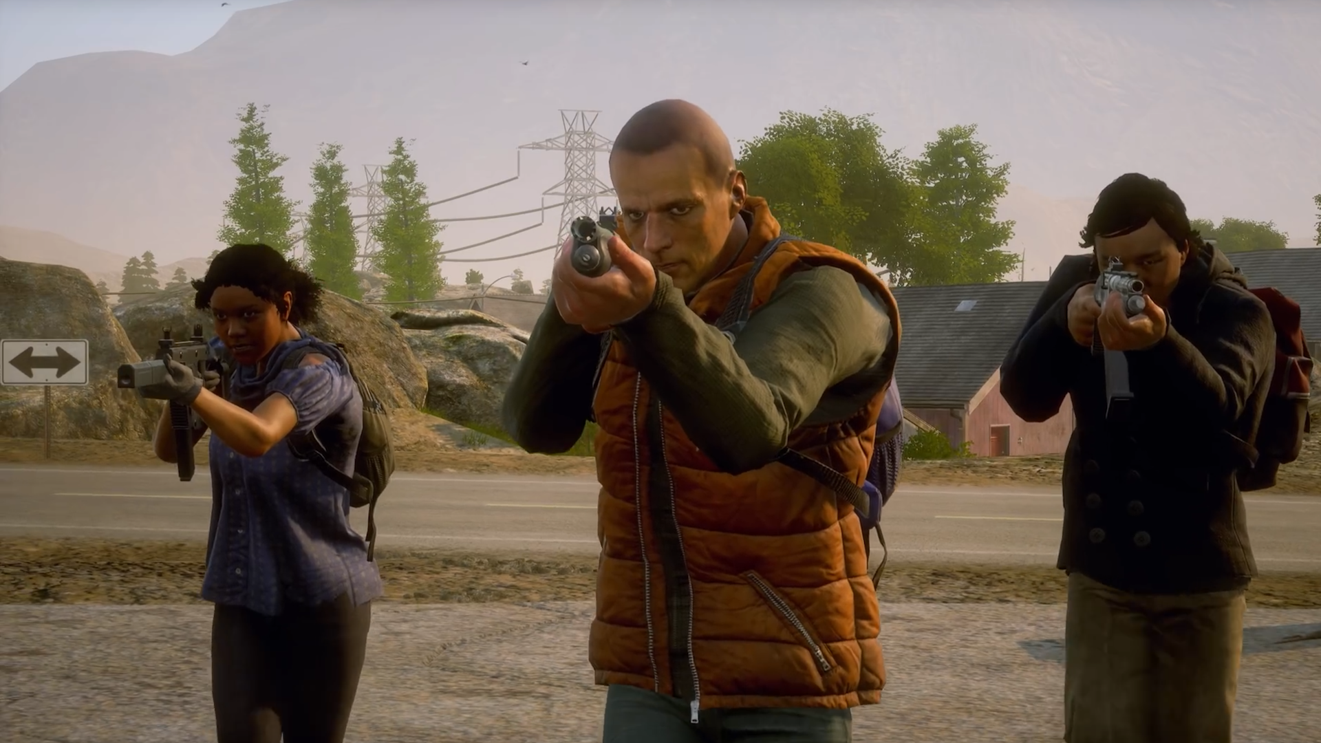 State of Decay Multiplayer Formation